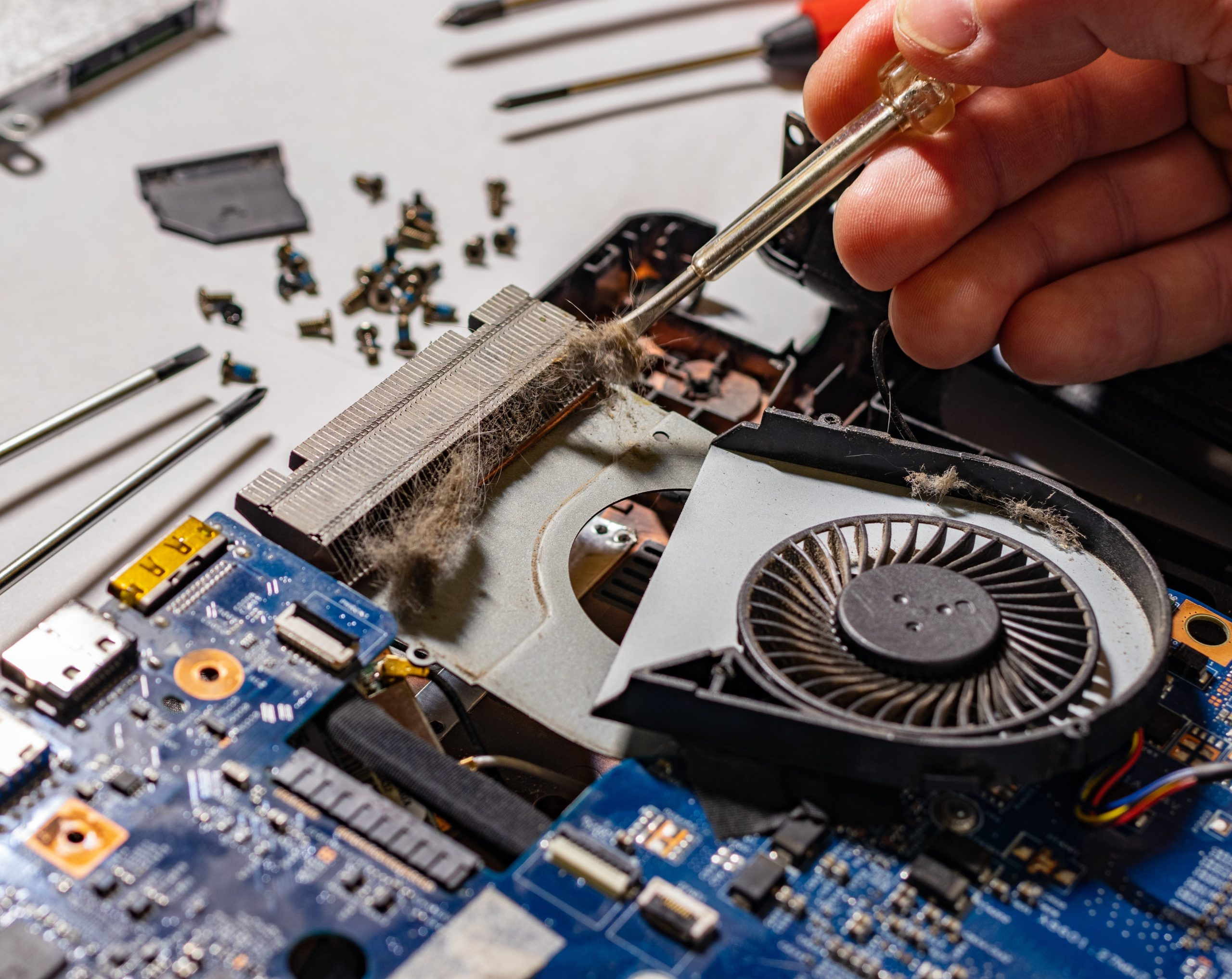 Repairman cleans screwdriver coat with radiator laptop. Hair clogged cooling system of notebook. The master repairs the laptop from overheating. Screws and screwdrivers are on the table.